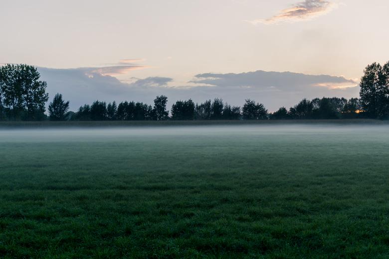 Winter mist - Winter avond, zonsondergang met een laag hangende mistbank.