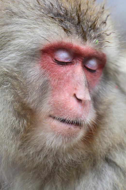 Éven relaxen - Even een momentje rust zonder apenstreken van de kleine.