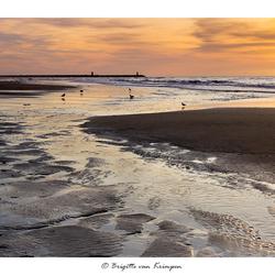 Northsea at sunset