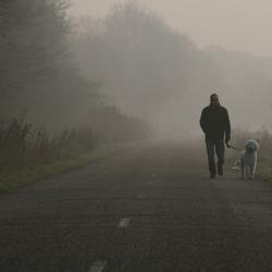 Walking on a foggy Sunday Morning