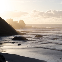 NZ South Island Westcoast