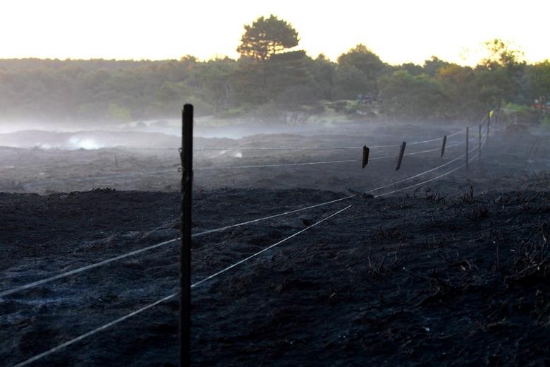 Na de Duinbrand 2 - Tijdens een rappoprtage van de duinbrand van 2 mei jl. deze foto gemaakt van  een hek <br /> deze was bedoeld om de duinen tegen