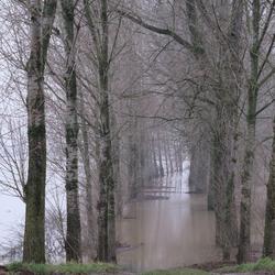 Hoogwater Wamel De Waal
