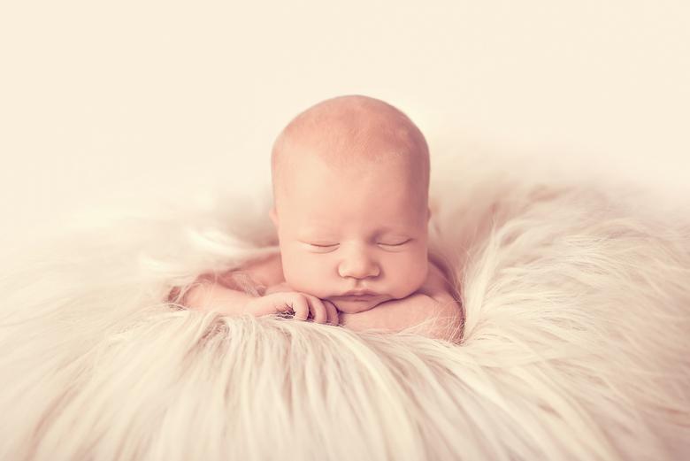 Laure newbornfotografie