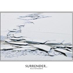 Surrender..