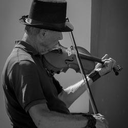 De eenzame violist