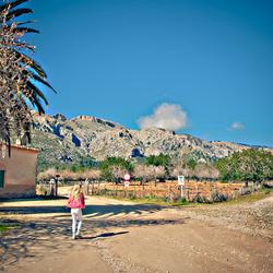 Typisch Mallorca