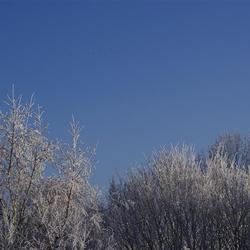 eindelijk weer winter