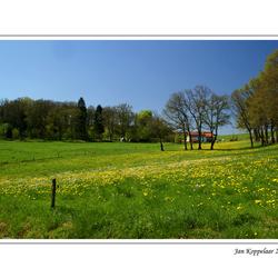 Belgische Ardennen 2
