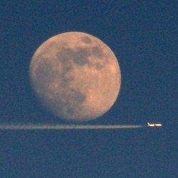 'Chasing Moon'
