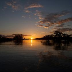 Sunset Cuyabeno National Park (Ecuador)