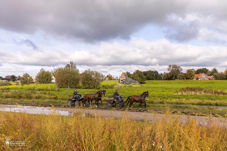 Zoetermeer - Eeen rondje paard en wagen op een druilerige zondagochtend ......