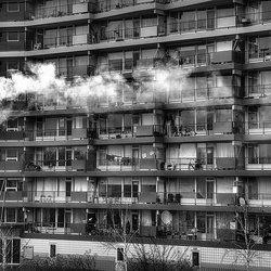 The Neighbours.jpg