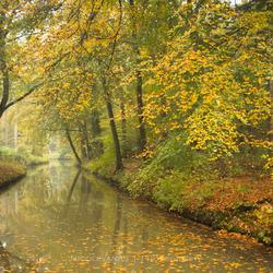 Autumn sfeer 2.