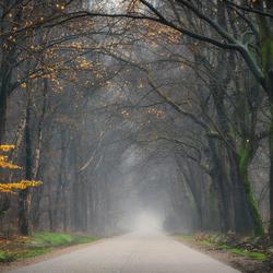 Seasons mystery