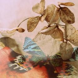 Annabelle/vlinder (combi 2)