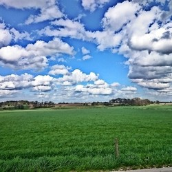 gras is groen, lucht is blauw