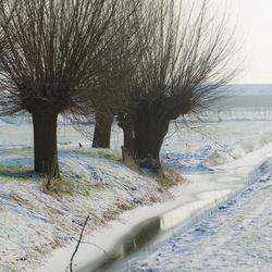Nog steeds winter