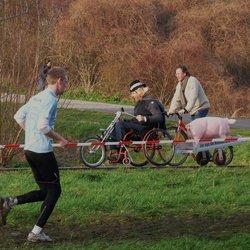 Wllebrandcross Westland nr5  HUMOR  28 jan 2012