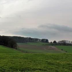 Panorama Zuid-Limburgs Landschap