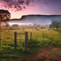 Zon in de vallei