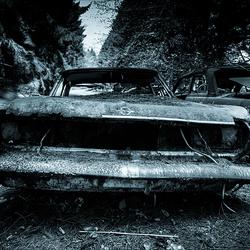 Car Graveyard 11