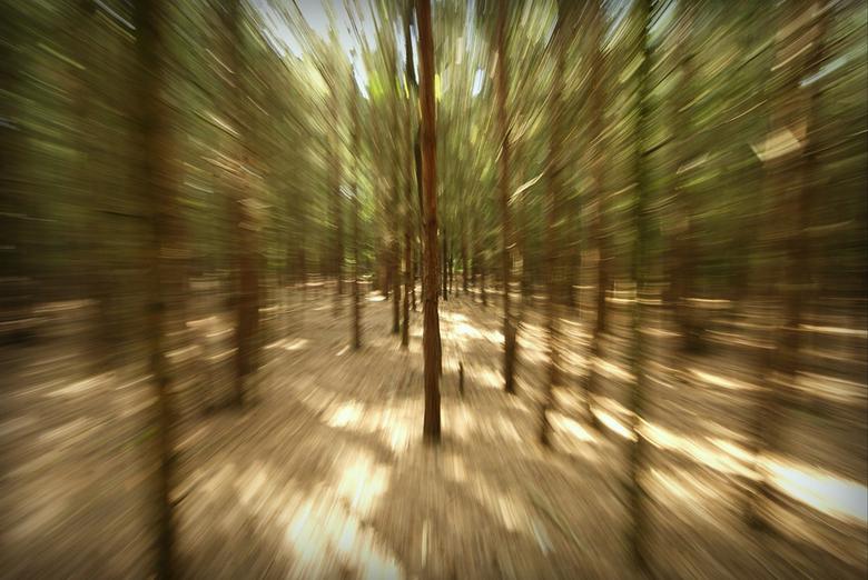 Mountainbike-view - Foto genomen met het uitzoomen met de lens.