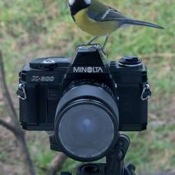 Op de Camera en kijken naar de Camera