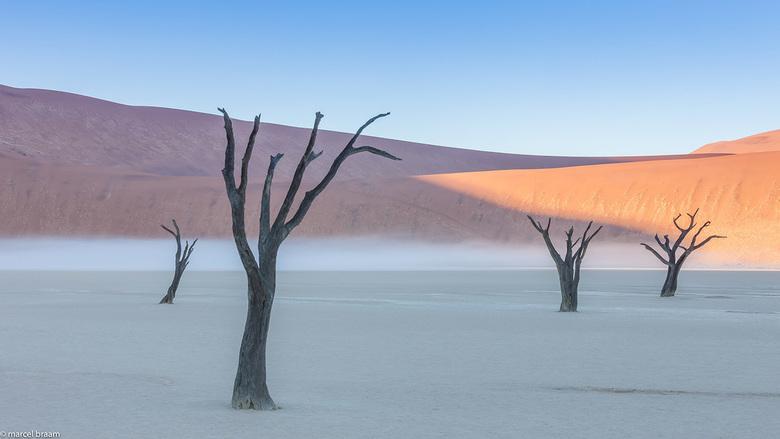 Mist in de woestijn