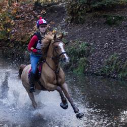Paardencross 1