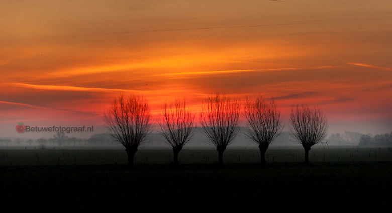 Sunrise in de Betuwe - Net voor zonsopkomst deze kleuren in de lucht.....