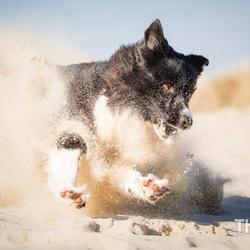 Zand happen met Fenna