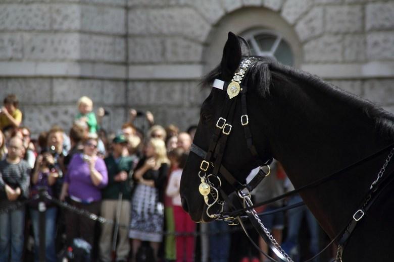Wisseling van de wacht - Londen 2013, Horse Guards Parade