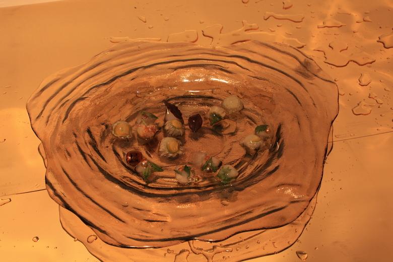 089 - Een aantal jaren geleden bij een cursus fotografie werken met ijs. Nou,borrelglaasjes vullen met water een bloem erin in laten vriezen en foto&#