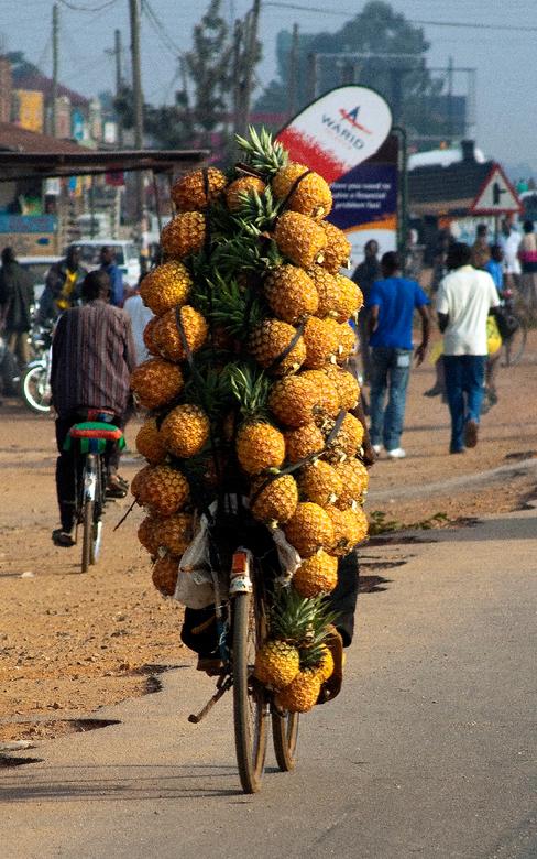 ananas - Rijdend gemaakt in Uganda. Hij kwam vanaf een hoge heuvel en we zagen hem aankomen. Meerdere foto's gemaakt, maar deze is het geworden,