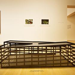Stedelijk museum 35