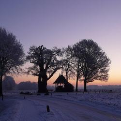 Kroezeboom Fleringen