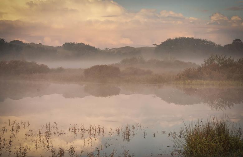 Dreaming Dawn - Dreaming Dawn
