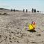 Strandweer 2