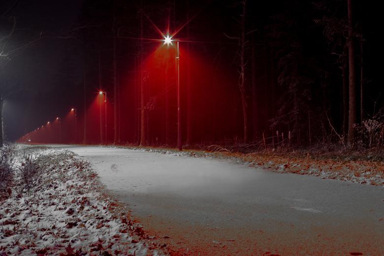 Vleermuizenlicht - Een fietspad langs de bosrand, verlicht met vleermuisvriendelijk licht, nadat wat verse sneeuw is gevallen. Een bijzondere sfeer.