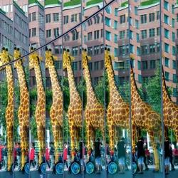 Berlijn  13 - gi gi gi gi gi giraffe