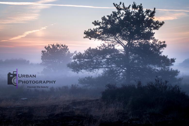 zonsopkomst  - S'morgens om half 6 staand in de ochtenddauw genietend van de zonsopkomst. Wat een schitterend moment.