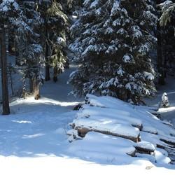 Nog meer sneeuw