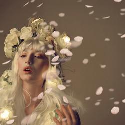 Je regarde les fleurs tombent