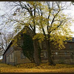 herfst in Limburg 3