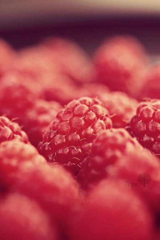 Raspberry Field - Macro van frambozen