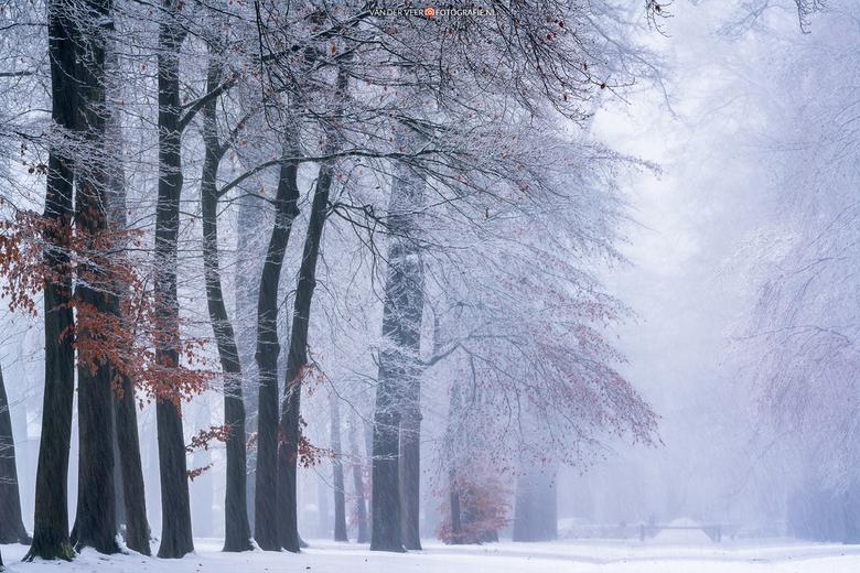 """Winter Wonderland - Winter Wonderland, voor Paleis het Loo vorig jaar december.<br /> <br /> Groeten Frederik<br /> Volg <a href=""""http://www.vander"""