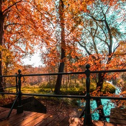 Very autumn
