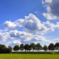 Drenthe 23