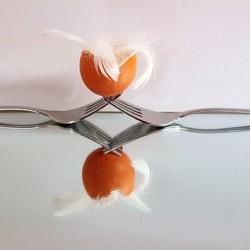 vork en ei op spiegel